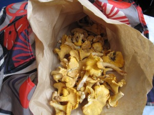 food-chanterelles 017
